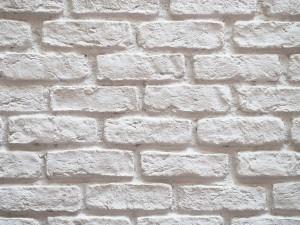 Pintura en Polvo a la Cal para pintar paredes