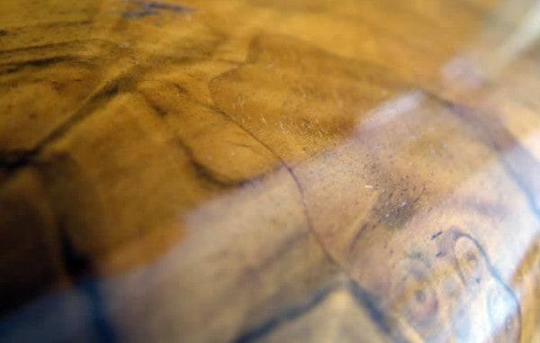 Barnices protecci n y embellecimiento de la madera - Pintura para madera barnizada ...