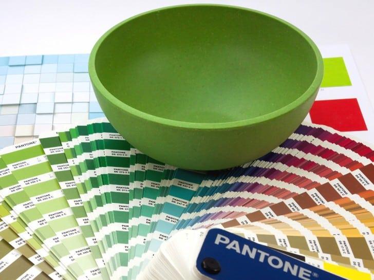 Guía de colores bowl verde