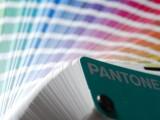La guía de colores Pantone