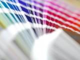 Colores y combinaciones de pintura