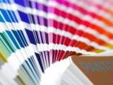 El color y la decoración