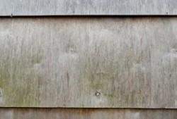 Manchas de humedad en madera