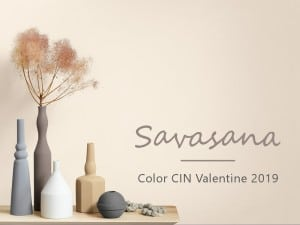 El color del año y nuevas tonalidades de pintura de CIN Valentine