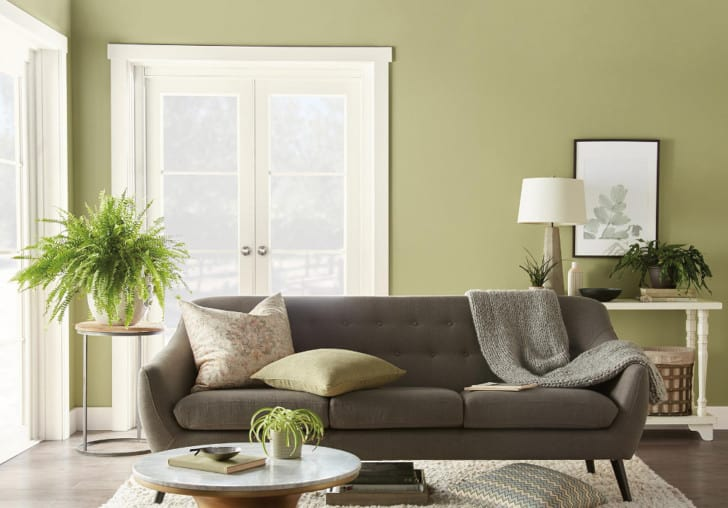 Sala en color verde seco